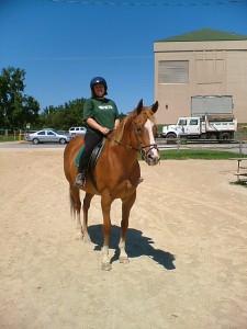 Doc , 2009 (PETS photo)